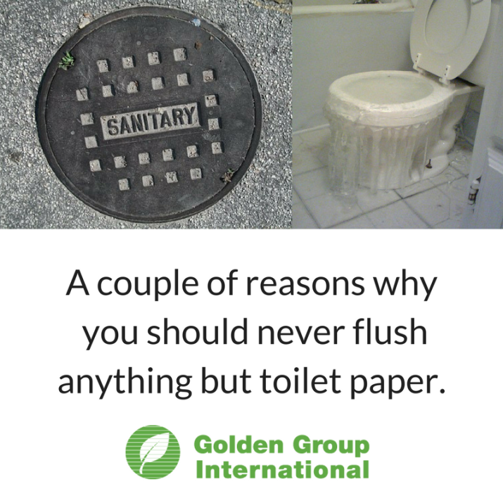 Social media A couple of reasons why you should never flush anything but toilet paper